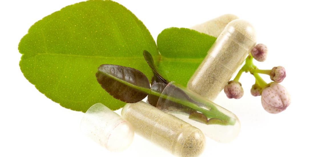 L'utilizzo delle piante officinalis in fitoterapia