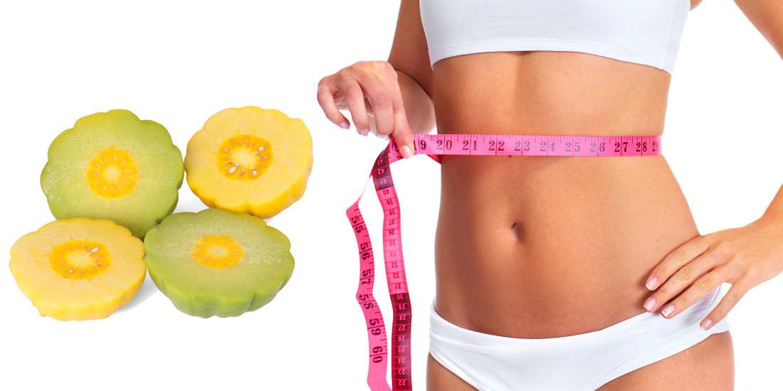 Sovrappeso e Garcinia titolata in acido idrossicitrico