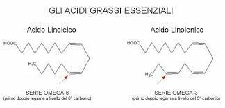 gli acidi grassi essenziali