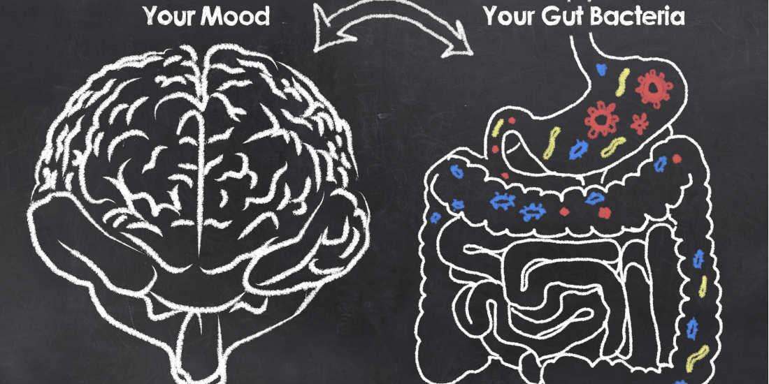 Psicobiotici, cosa sono e perchè funzionano