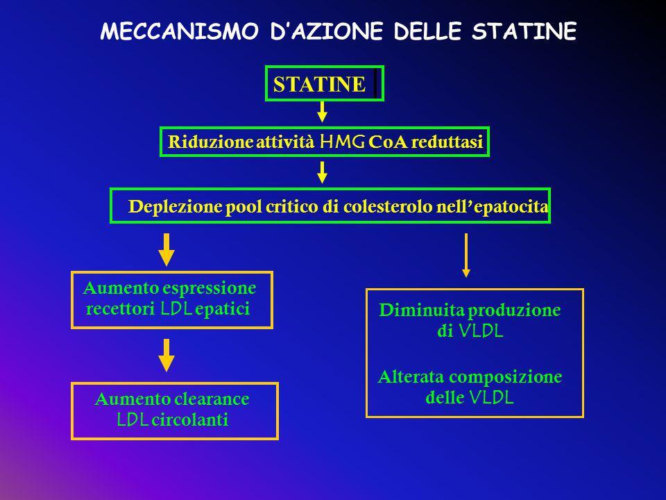 grafico statine e loro meccanismo d'azione