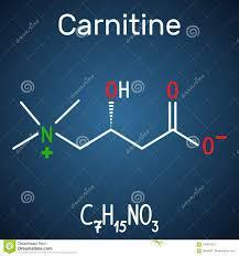 Struttura chimica della carnitina