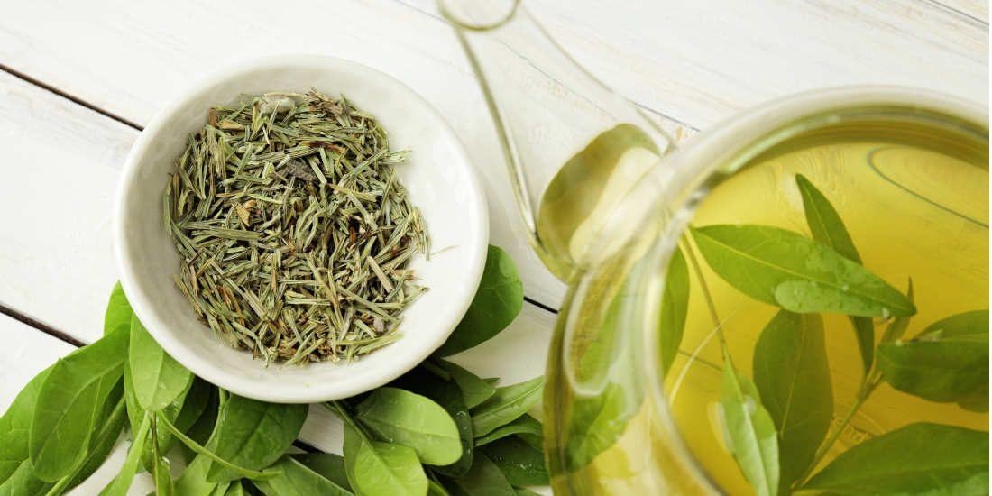 Tè verde: 11 proprietà di questa pianta benefica