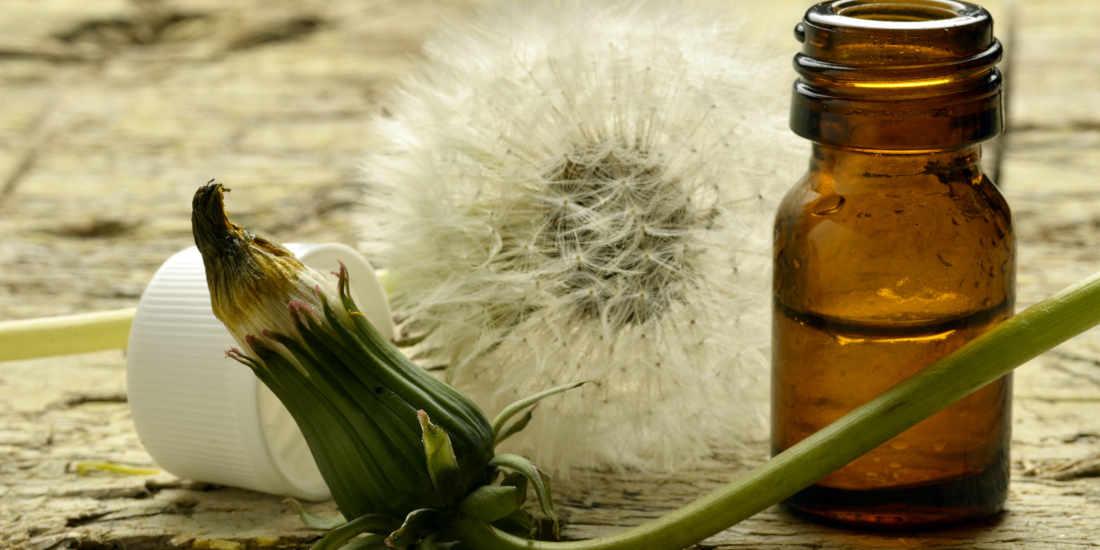 Drenanti naturali, il forte potere diuretico e dimagrante degli estratti vegetali