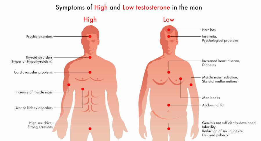 sintomi testosterone basso e alto