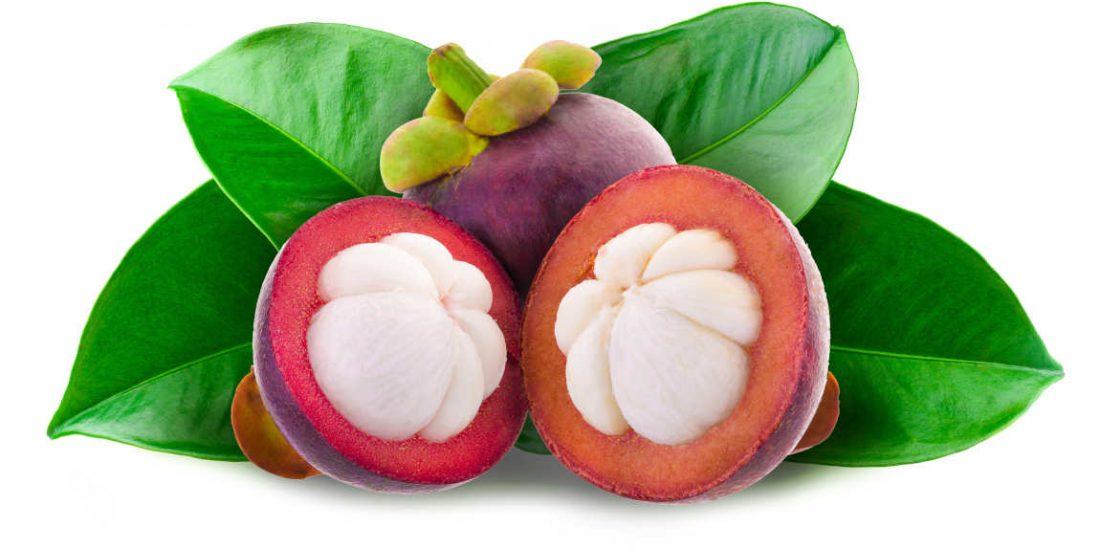 Mangostano Succo: Proprietà benefiche e cosmetiche