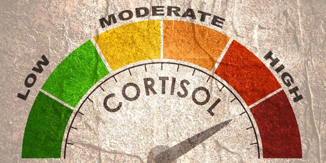 Cortisolo alto: sintomi, cause e rimedi per abbassarlo